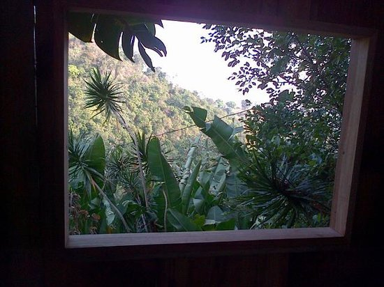 EITS Cafe : View from the bathroom
