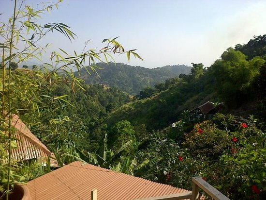 EITS Cafe : View from the Deck