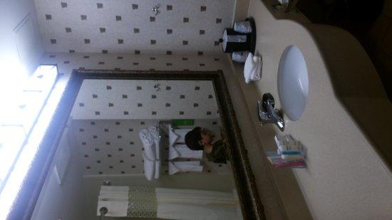 Hampton Inn Boston Bedford Burlington : banheiro