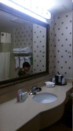Hampton Inn Boston Bedford Burlington: banheiro