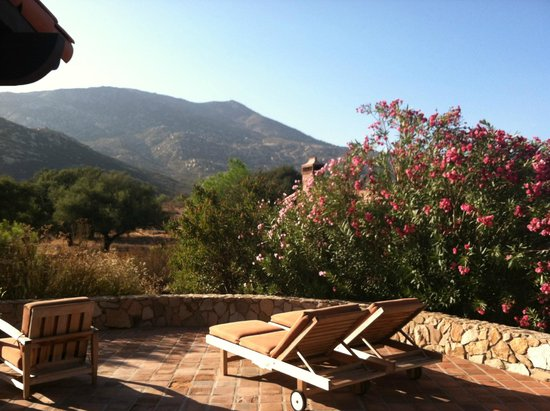 Rancho La Puerta Spa: View from our Patio
