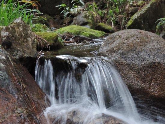 Pousada Canto das Aguas: Cachoeira Sede