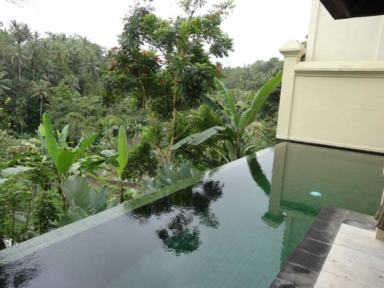 Komaneka at Bisma : View from private pool