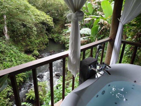 Komaneka at Bisma : View from the massage rooms