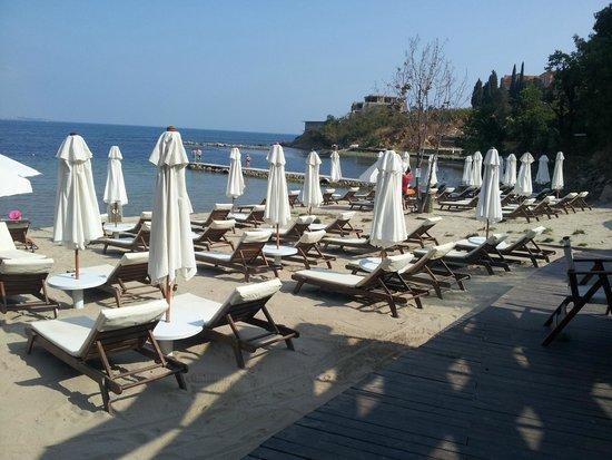 Santa Marina Holiday Village : The beach