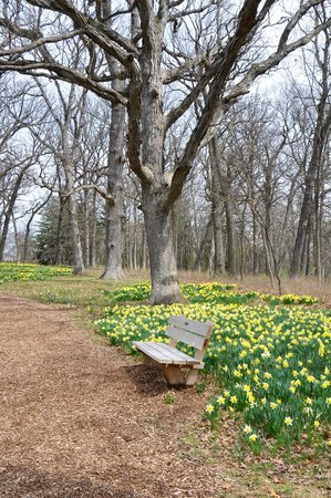 Morton Arboretum : Sit and enjoy the view