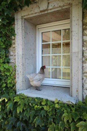 La Haute Muraille : Nosy Hen