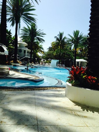 The Raleigh Miami Beach: Another view of the pool.