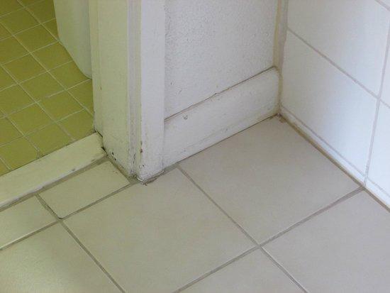 Rodeway Inn: Jacuzzi Suite (Washroom Floor)