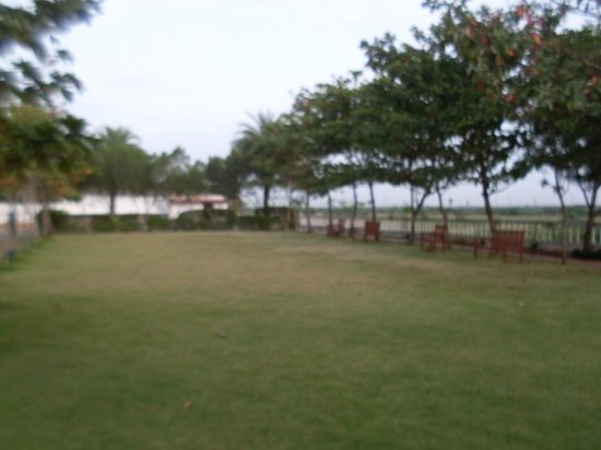Citrus Sriperumbudur: lawn near pool