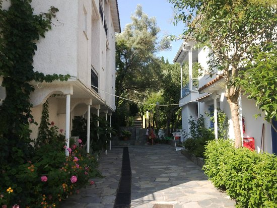 Saint Georges House Hotel: the way to the garden