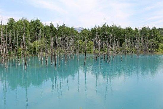 Blue Pond : 青い池①