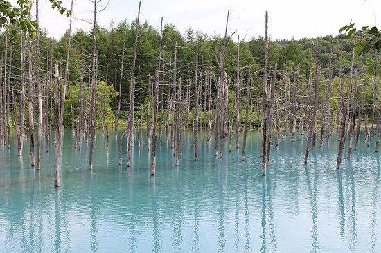 Blue Pond : 青い池②