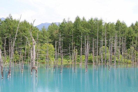 Blue Pond : 青い池③