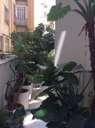 Achilleas Hotel: de tuin/ uitzicht (garden/view)