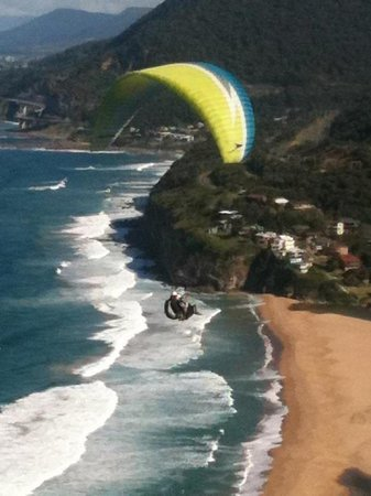 Bald Hill Lookout & Hang Gliding Spot: Paraglider at Bald Hill, Stanwell Tops