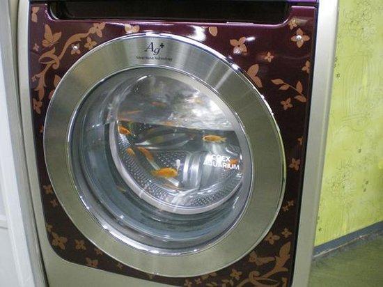 Coex Aquarium: 面白い水槽も