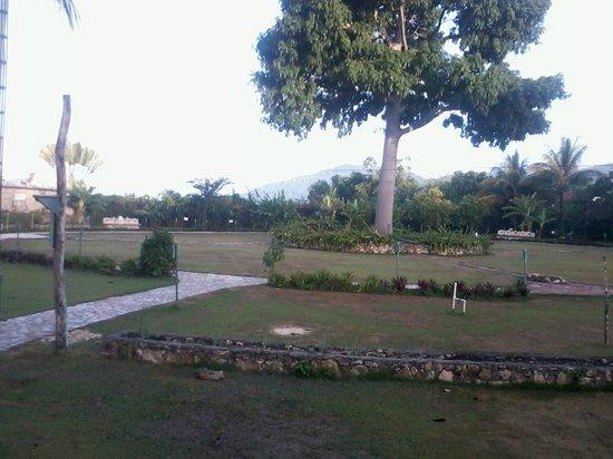 La Casa De Don David: La Ceiba del Milenio y todo un curso de cosmogonía maya