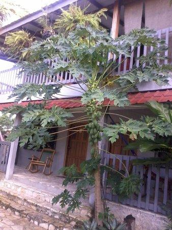 La Casa De Don David : Exterior de las habitaciones, integradas al jardín