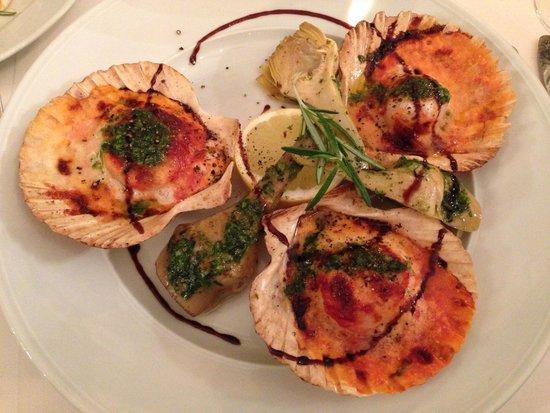 Gallo Nero : scallops/capesante
