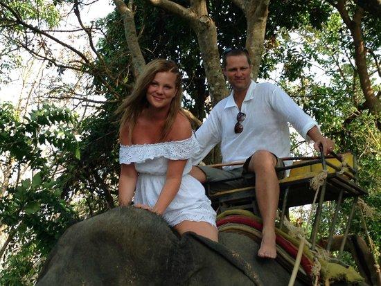 KokChang Safari Elephant Trekking: Loved the ride