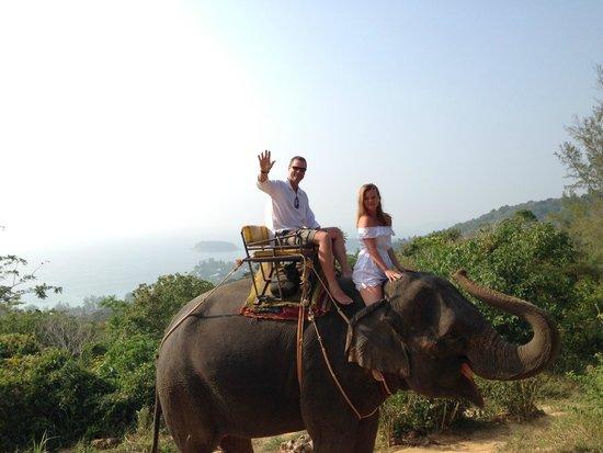 KokChang Safari Elephant Trekking: Spectacular views