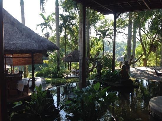 The Payogan Villa Resort & Spa: Ресторан