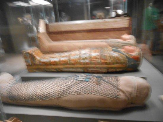 Museum of Fine Arts: Egyptian Art