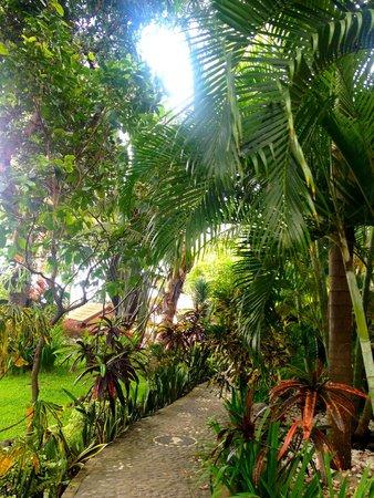 Villa Selina : Tropical oasis