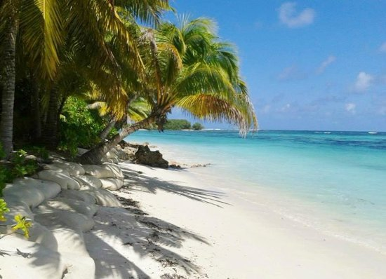 Desroches Island : Our little private beach in front of the Lodge