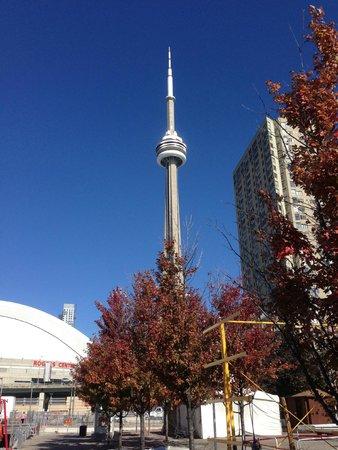 CN Tower: landmark of Toronto