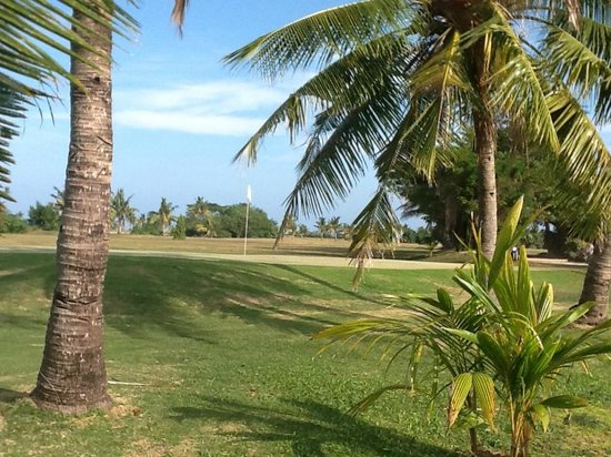 Plantation Island Resort : Golf Course