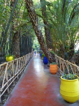 Jardin Majorelle : One of the walkways