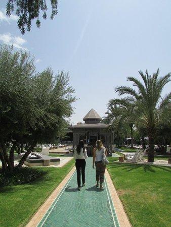 Jardin d'Inès : Zona exterior