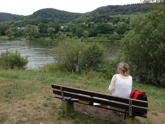 Hotel Gonzlay: En picnic längs Mosel