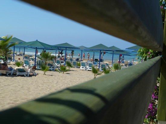 Paloma Oceana Resort: le bar de plage