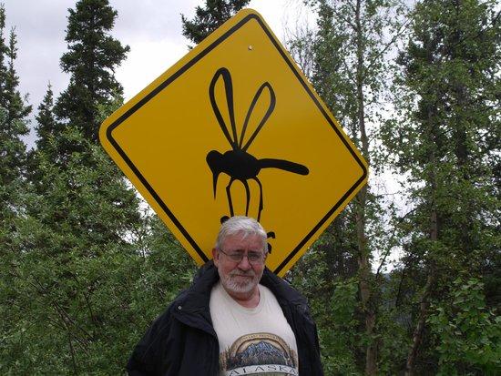 Grande Denali Lodge: Los mosquitos impresionan.