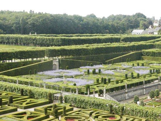 Château de Villandry : Villandy gardens