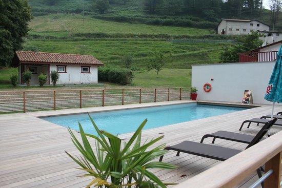 Hotel Andreinia: piscine