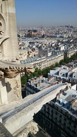 Tour Saint-Jacques: tour saint jacques