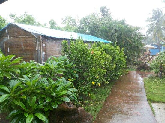 Paradise Village Beach Resort : cottage and garden