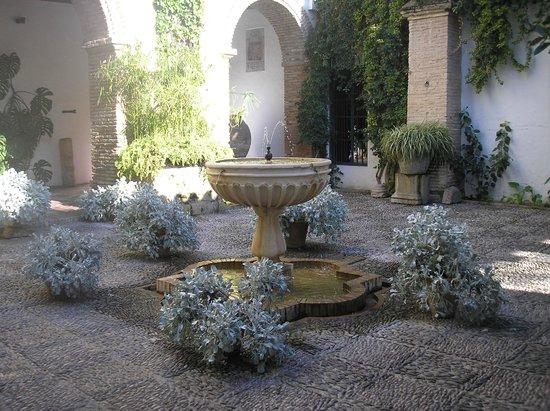 Palacio Museo de Viana: Palacio de los Patios