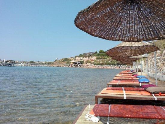 Didim Beach Resort Aqua & Elegance Thalasso : buradan girerken dikkat sığ ve dikenli