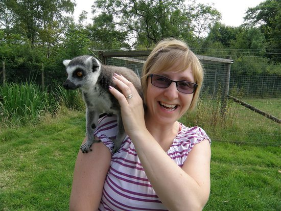 The Lake District Wildlife Park: Playing/feeding the lemurs