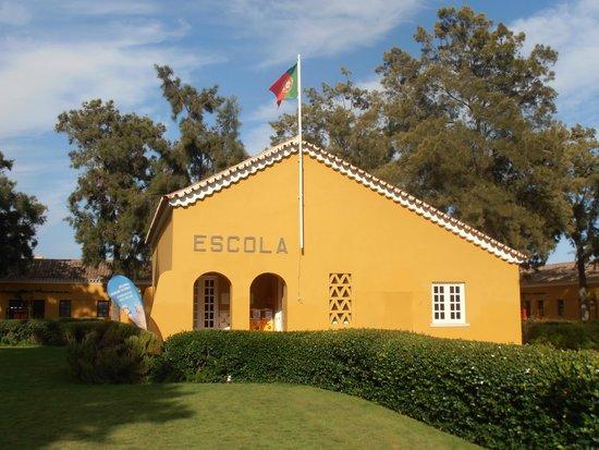 Vila Gale Albacora: O clube NEP para as crianças
