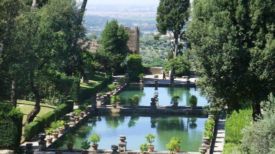 Villa d'Este : peschiere