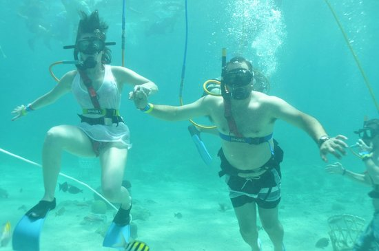 Ocean Adventures Bavaro Splash : Snoba