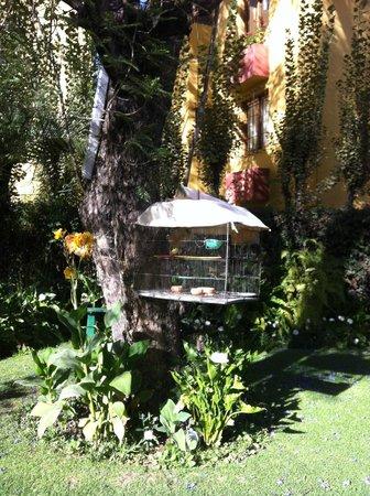 Hotel La Casa de mi Abuela: Garden.