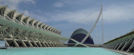 Ciudad de las Artes y las Ciencias: Stunning views.
