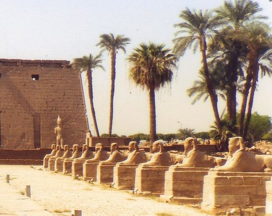 Avenue of Sphinxes: particolare